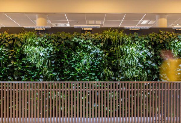 Blog: Groeien in innovatie